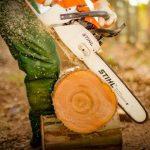 Tuyển công nhân chế biến và khai thác gỗ đi làm việc tại Romania